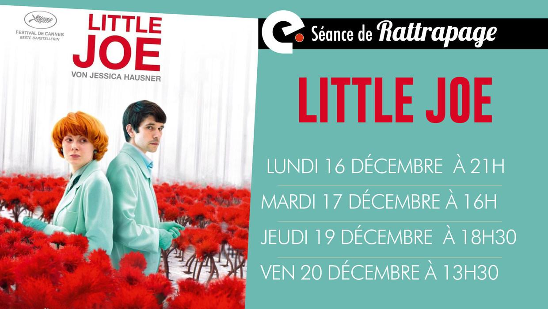 Photo du film Little Joe