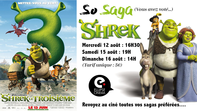 Photo du film Shrek le troisième